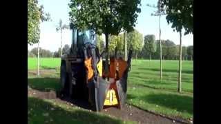 Transplantar árboles para preservar el medio ambiente