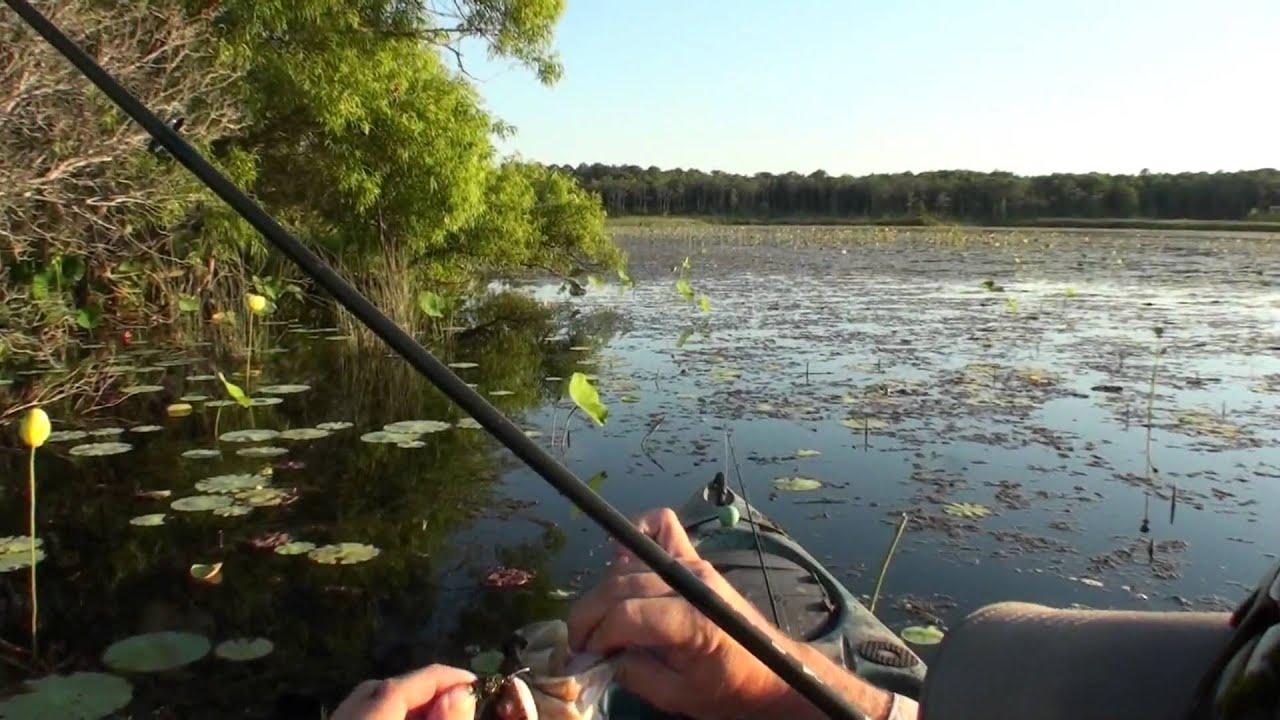Kayak bass fishing capt ken dauberts designer bass frogs for Bass fishing kayak