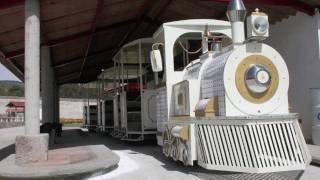 Trackless Trains, Electric, Kiddie Mall Train, Children