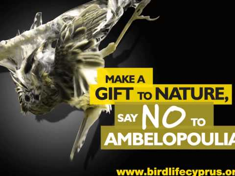 Cyprus bird trapping - BirdLife Cyprus' radio spot on the large scale killing of birds