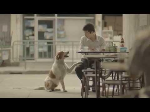Quảng cáo xúc động nhất thế giới 2015 l quảng cáo ý nghĩa Thái Lan