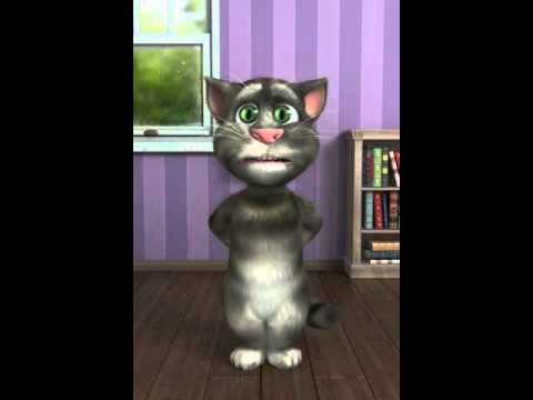 el gato weah 1