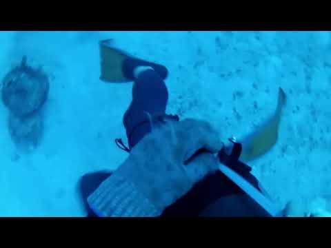 Bottom of the Ocean - Martin Stepanek