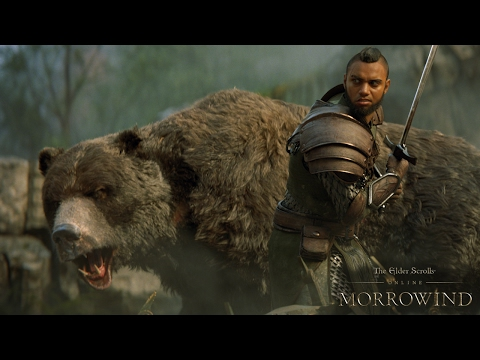 Bethesda The Elder Scrolls Online: Morrowind PS4