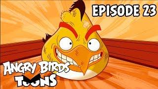 Angry Birds Toons #23 - Rozbíječ brány