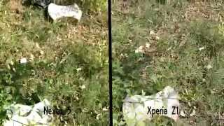 Sony Xperia Z1 Vs Nexus 5 Photo & Video Comparison