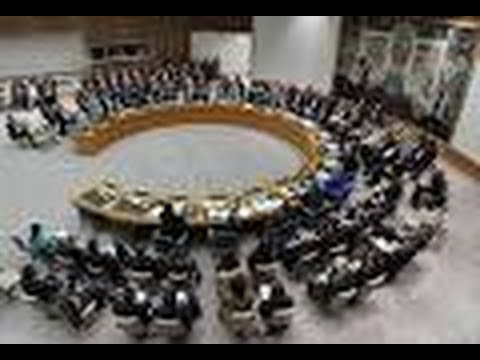 UN Chooses Five New Non-Permanent Security Council Members
