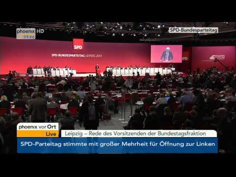 SPD-Parteitag - Rede von Frank-Walter Steinmeier am 15.11.2013