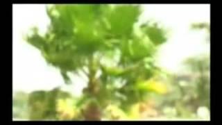 Mikaya Behailu - Lemalemeh ለማልምህ (Amharic)