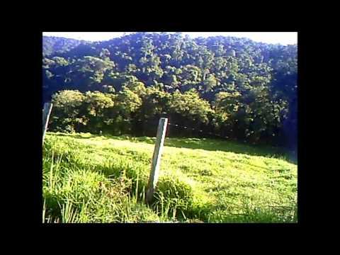 corredor 944 - vídeo nº 14 - o Pico do GAVIÃO [dia de treinamento]