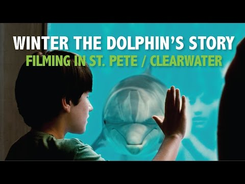 The Filming of Dolphin Tale in St. Pete Clearwater, FL