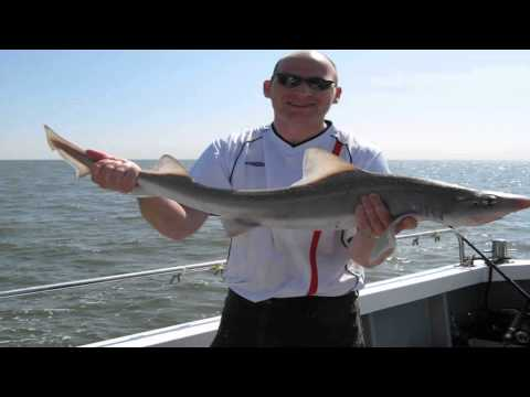 Sophie Lea Fishing Charters Brightlingsea Essex
