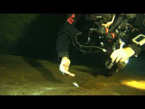 Sidemount Diving: Rose Sink Cave