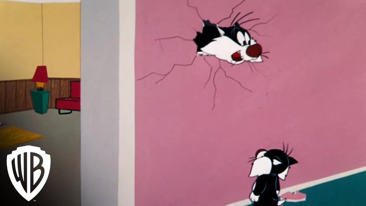 Looney Tunes Super Stars Sylvester Amp Hippety Hopper