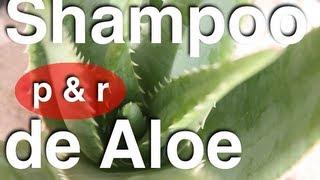 Champú Casero De Aloe Vera: P&R: Espuma, Jugo De Aloe