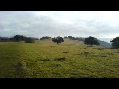 Box Hill Dorking Surrey