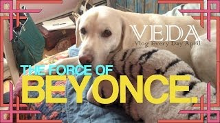 THE FORCE OF BEYONCE | VEDA!