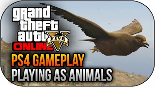 GTA 5 PS4 Next Gen How To Play As Animals Gameplay