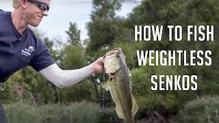 How To Fish Weightless Senkos Shallow For Bass