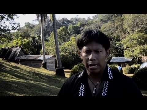 Tabasará Libre: El sueño Ngäbe Buglé