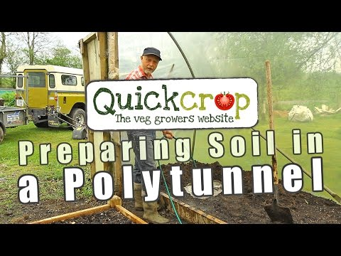 Preparing Soil in a Polytunnel