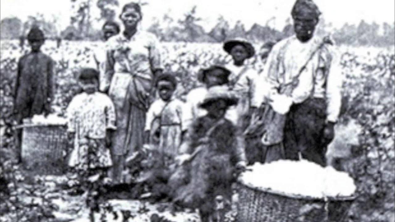 Woman slaves on plantation erotic reality breasts