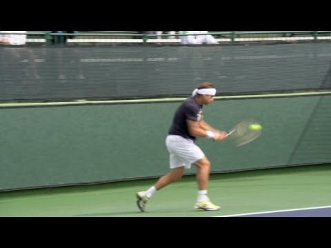 David Ferrer Forehand and Backhand 3 - Indian Wells 2013 - BNP Paribas Open