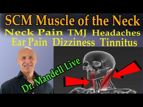 The SCM Muscle of the Neck -  The Common Cause of Neck Pain, TMJ, Headaches, Dizziness, Tinnitis