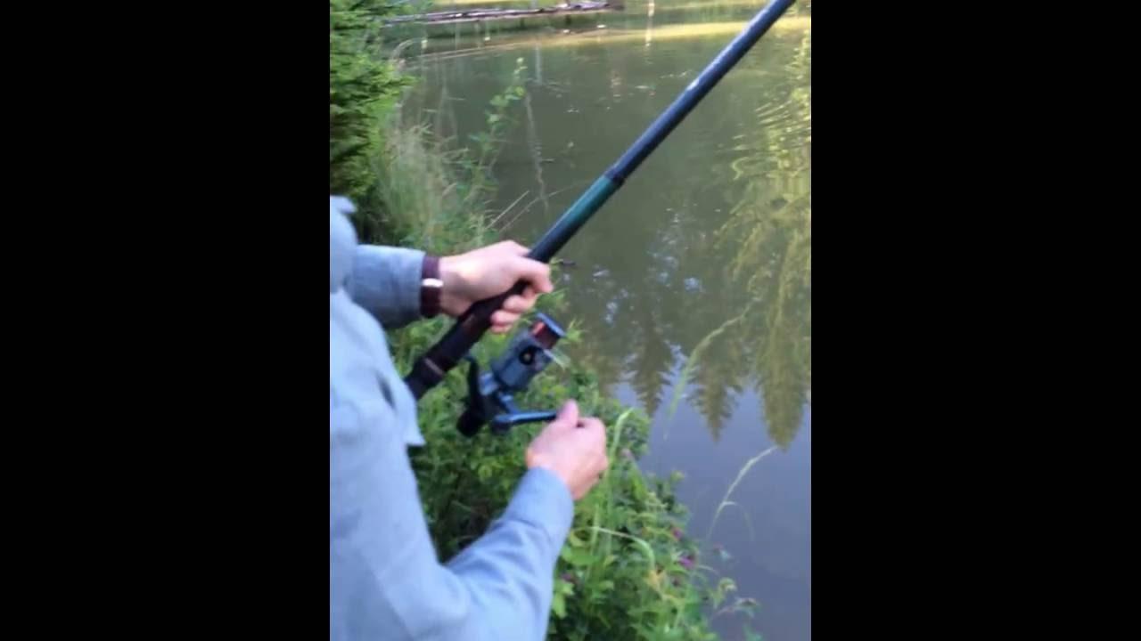 рыбалка получи и распишись карпа возьми диких водоемах