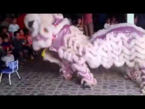 mua lan don tet trung thu mid autumn festival for kids