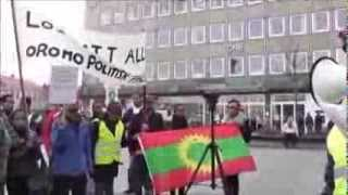Oromos in Trondheim, Norway, Rallied Against Human Rights Violations Against Oromos by the Ethiopian Tyrannical Regime (March 5, 2014)