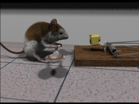 Blender 3D short animation