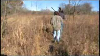 Hog Hunting With Gamo Hunter Extreme .22 Air Rifle One