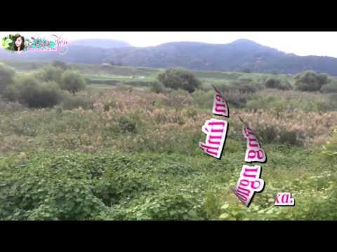 Karaoke  Hái Hoa Rừng Cho Em _Song ca với Cẩm Tiên