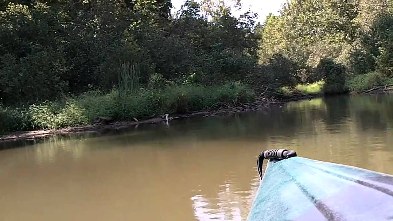 Kayaking parson 39 s mtn pond youtube for Sumter national forest cabins