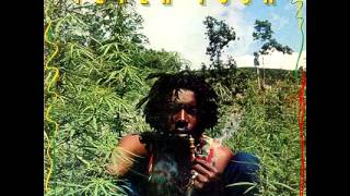 Peter Tosh [Live in Boston 1976] (Full Audio) view on youtube.com tube online.