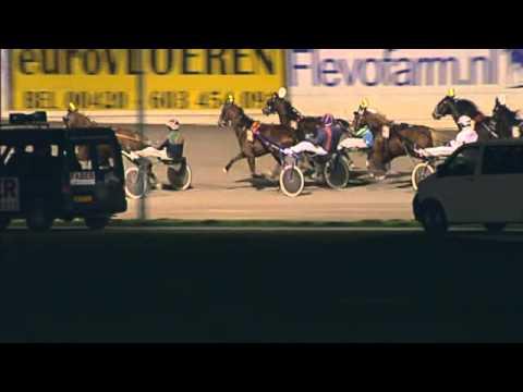 Vidéo de la course PMU PRIX HAIROS II