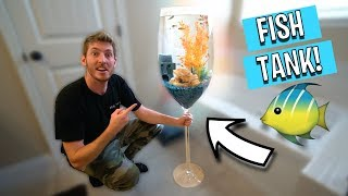 WE BOUGHT ALL THE GOLDFISH FROM WALMART!