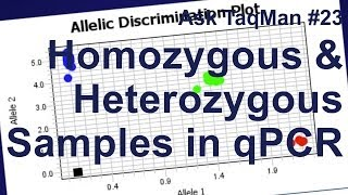 Homozygous vs. Heterozygous Samples in qPCR -- Ask TaqMan #23