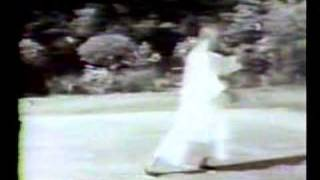 Cheng Man Ching Tai Chi Form
