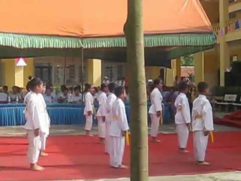 Dòng Máu Lạc Hồng  - Suzucho Karatedo Minh Nghĩa Đường - Vimido Liên Mạc