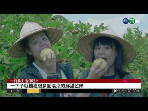 體驗農家生活 一日農夫遊程秒殺(影片長度:1分55秒)