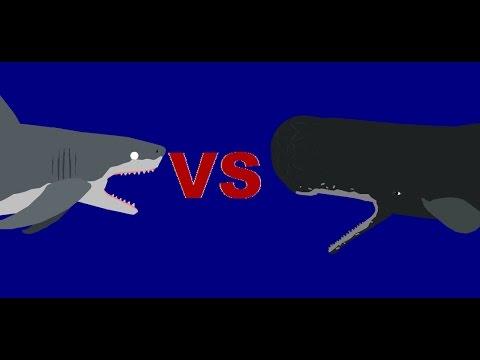 Battle Carnage: megalodon vs sperm whale