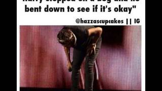 One Direction Cute & Funny Pics PART 3
