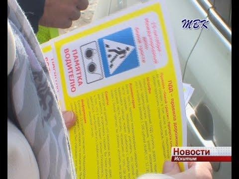 ВПятигорске провели акцию вМеждународный день Белой трости «Протяни руку!»