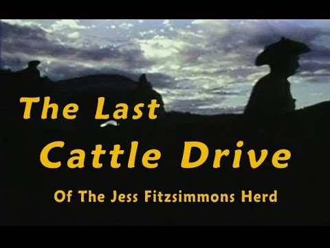 The Last Cattle Drive of the Jess Fitzsimmons Herd