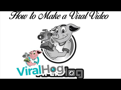 How to Make a Viral Video - By ViralHog