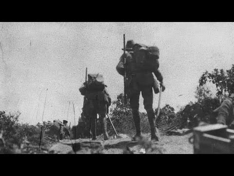 Soldier's Gallipoli letter reveals horrors of war