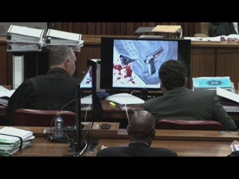 Pistorius trial: photos from the crime scene shown in court