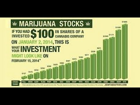 Marijuana Penny Stocks 2014 - Warning From Tim Sykes
